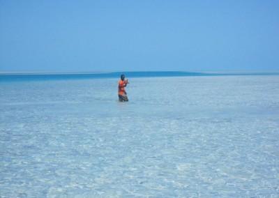 Bahamasdiscoveryquestbigblue